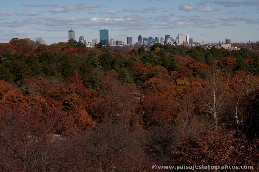 Boston desde Arnold Arboretum