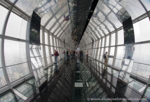 Mirador del Shanghai World Financial Center