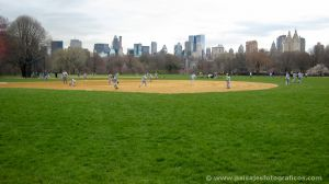 Great Lawn - Central Park